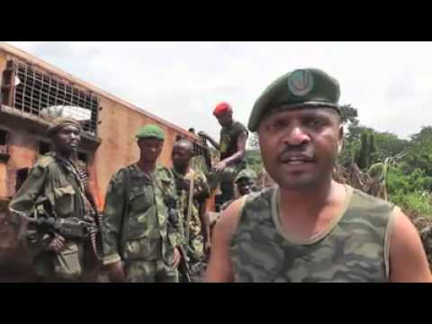 Operation Sokola Congo army launches offensive against ADF rebels
